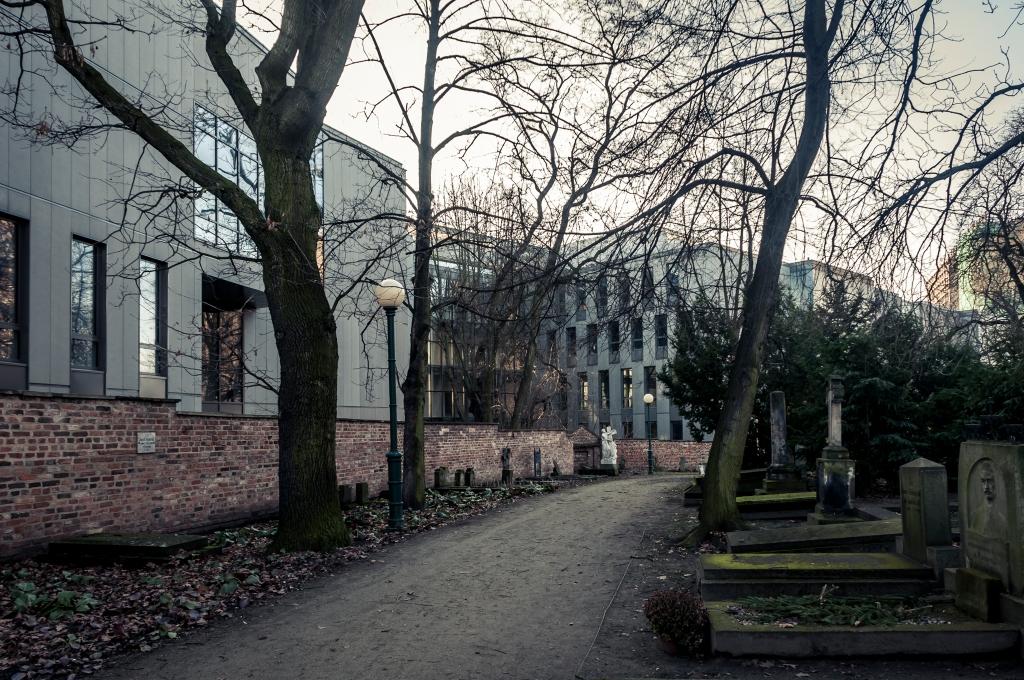 Cmentarz Zasłużonych Wielkopolan (3)