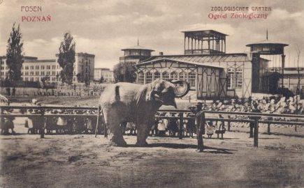 Poznań660